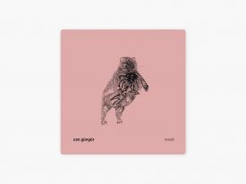 Can Güngör – Teselli