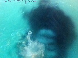 Zozka – Akvaryum